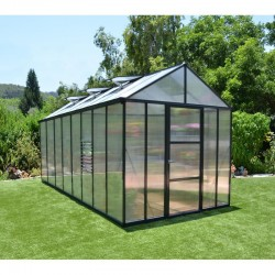 Palram 8'x16' Glory Greenhouse Kit (HG5616)