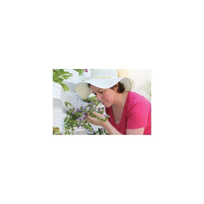 Palram PlantScape Vertical Garden Planter Kit - Terra (HG2100)