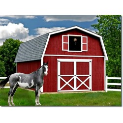 Best Barns Roanoke 16x32 Wood Storage Shed Kit (roanoke1632)