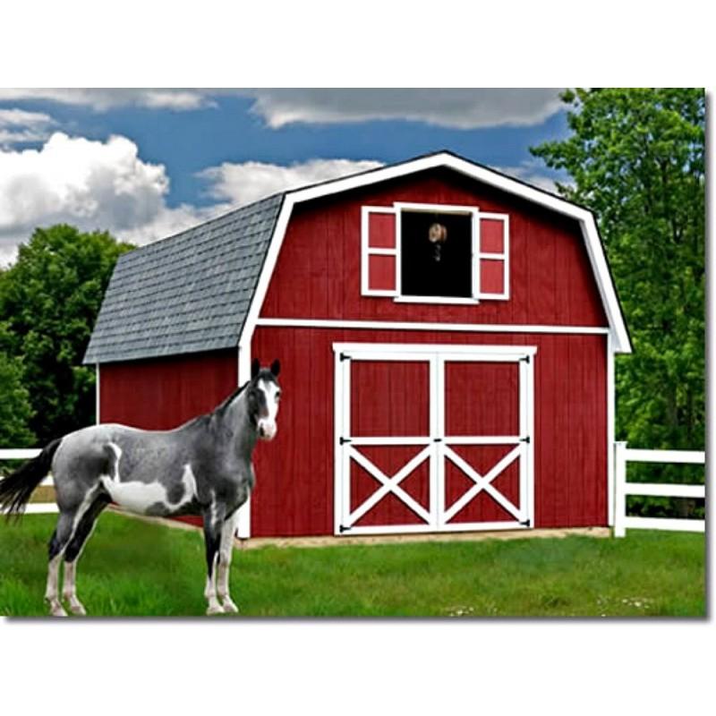 best barns roanoke 16x32 wood storage shed kit roanoke1632